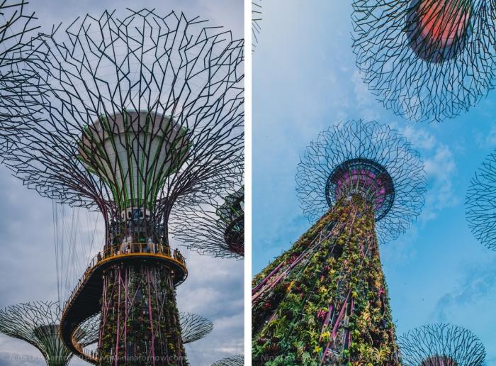 SingaporeBlog-3-2 copy