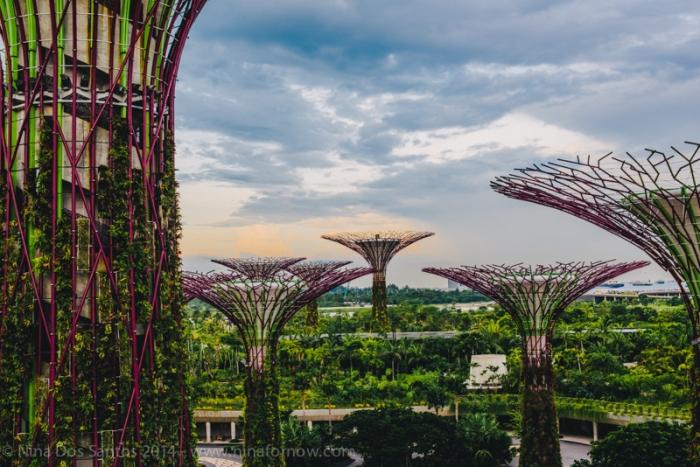 SingaporeBlog-65