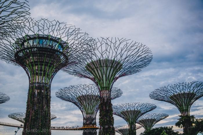 SingaporeBlog-67