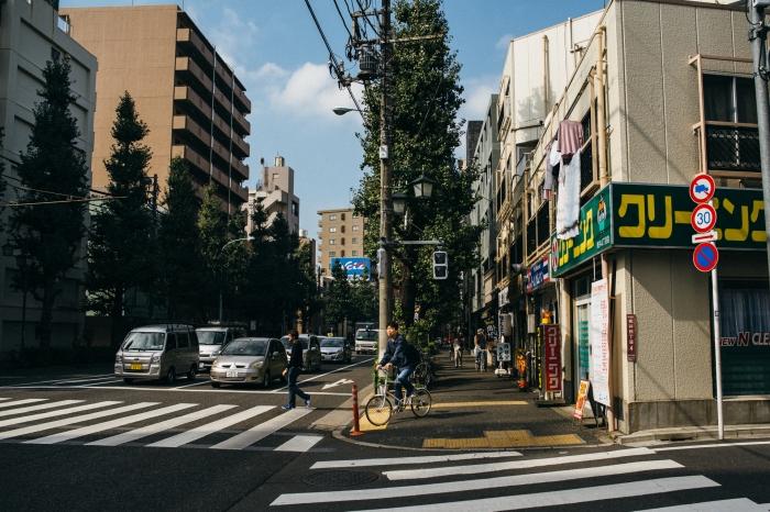 TokyoNikkoFuji-162